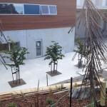 Babnich-Courtyard-2
