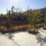 babich-courtyard